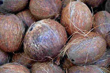Проект Экологическое чистое кокосовое масло для Филиппин и Индонезии