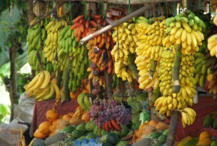 Cerere 6000- автоматическая овощечистка  для бананов
