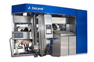 Молочное животноводство, будущее с VMS V300, инновационными доильными роботами